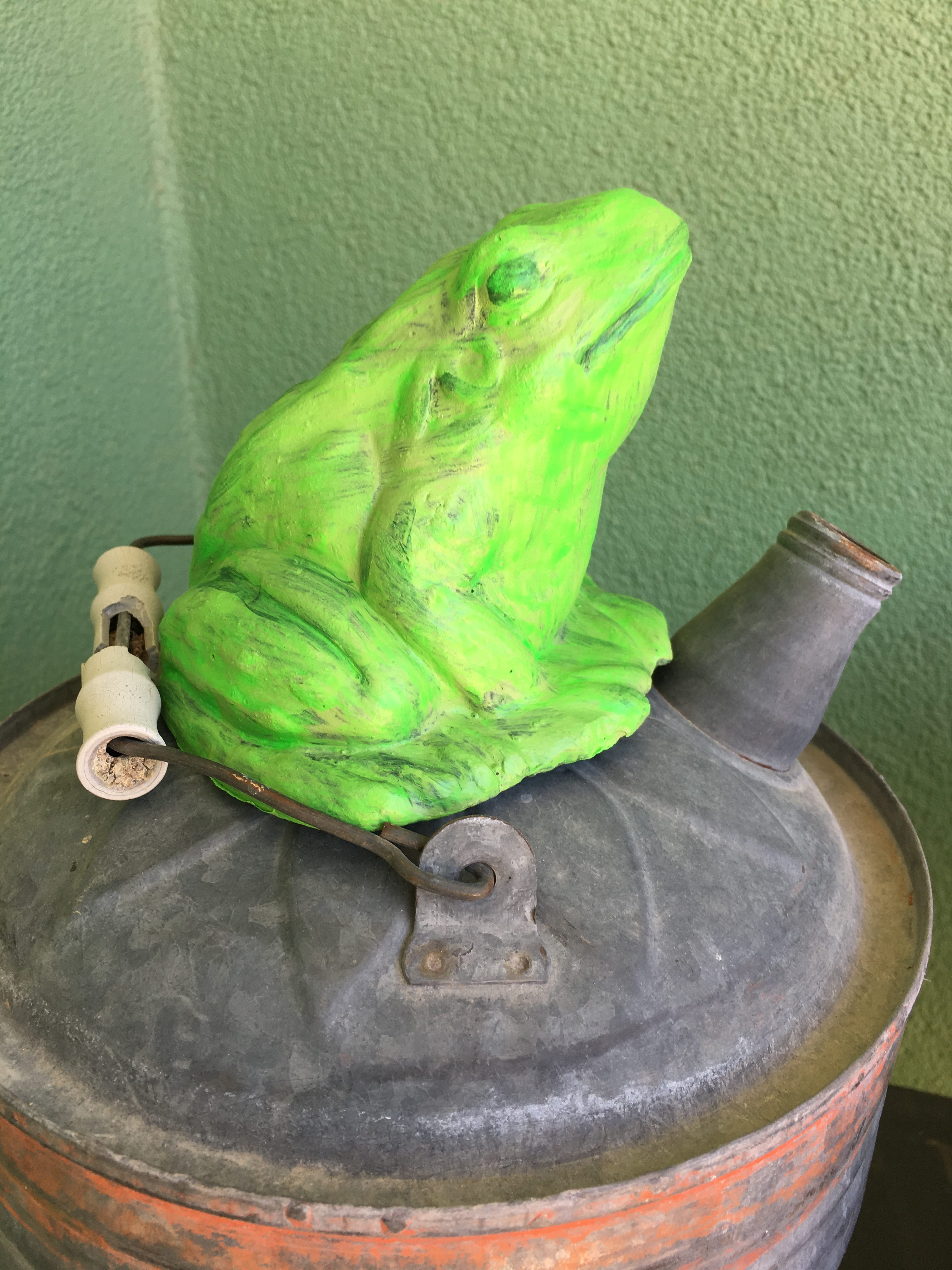 Relax and Do Nothing Frog